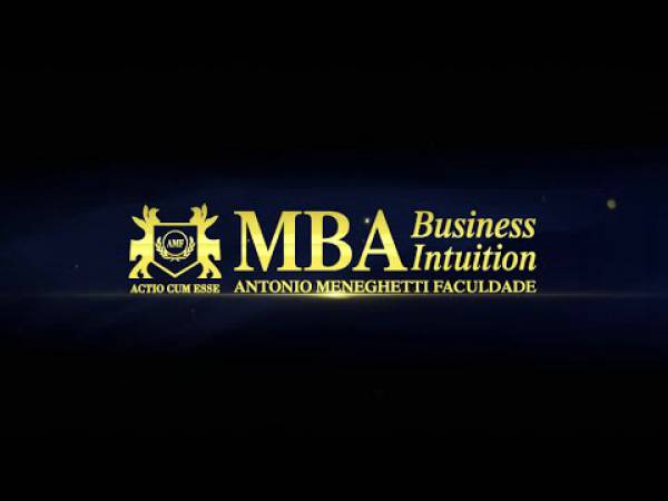 MBA Business Intuition - Identidade Empresarial 2013-2014